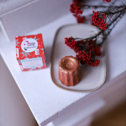 Shampoing de Noël solide orange cannelle badiane