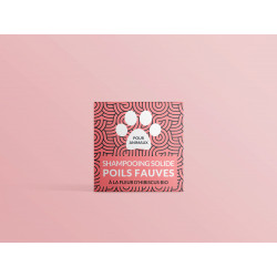 shampoing chien fauve
